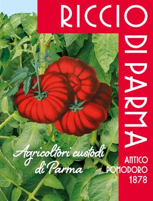 Pomodoro Riccio di Parma